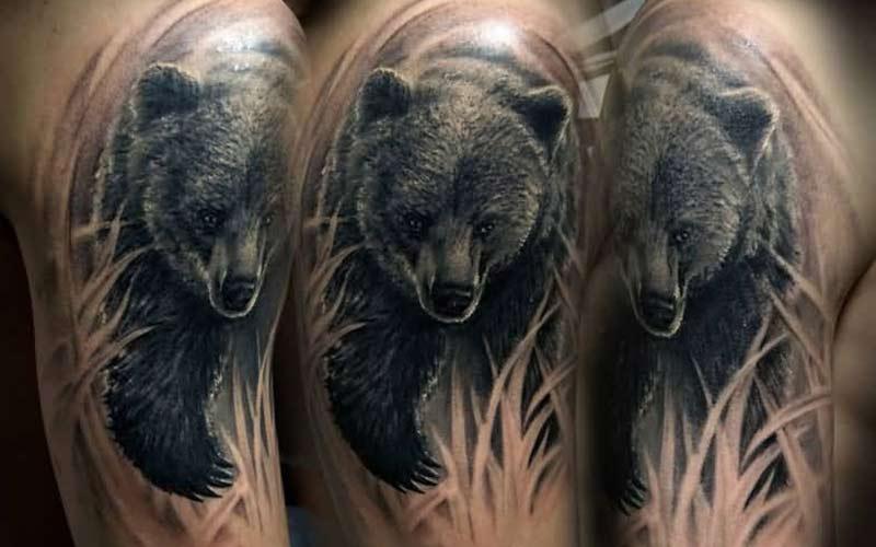 تاتو خرس روی بازو