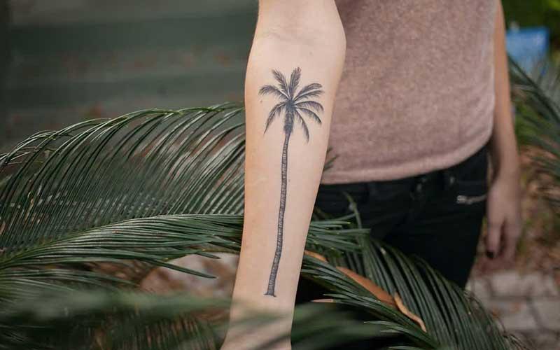 طرح درخت نخل روی دست