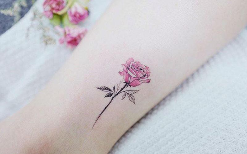 طرح تاتو گل رز رنگی