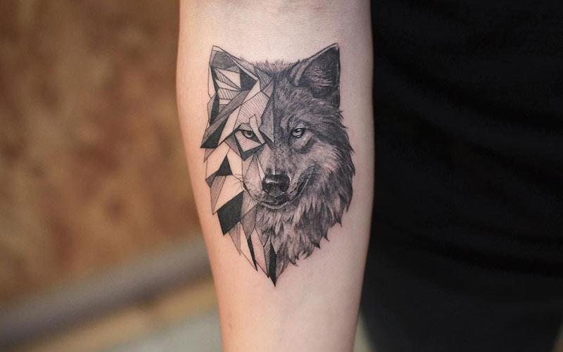 خالکوبی گرگ روی دست