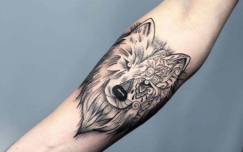 خالکوبی گرگ وحشی