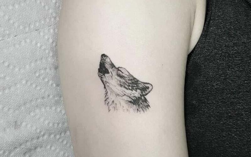 تاتو گرگ کوچک