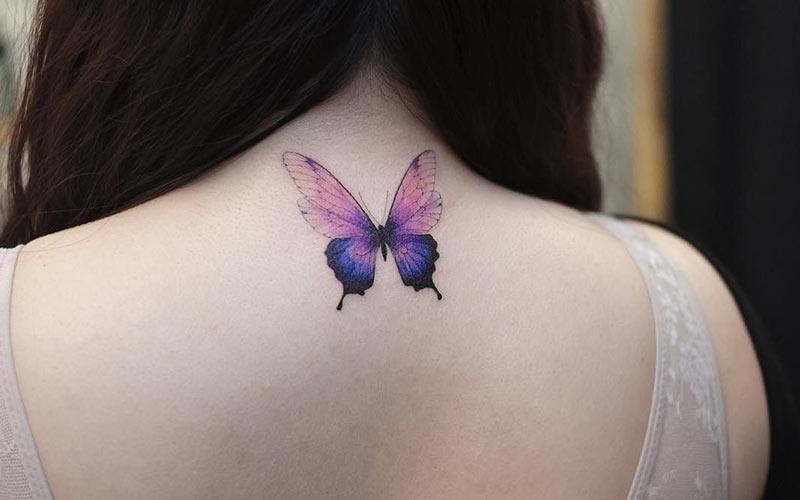 خالکوبی پروانه زیبا