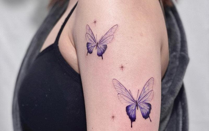 طرح پروانه و ستاره