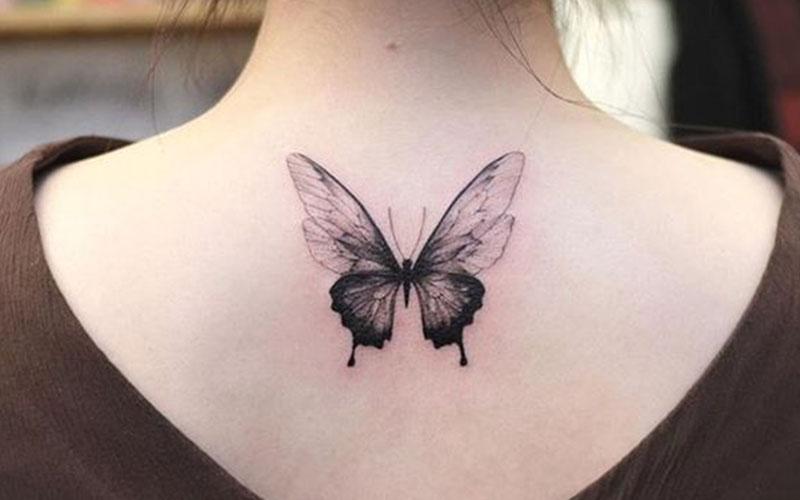 تاتو پروانه مشکی پشت کتف