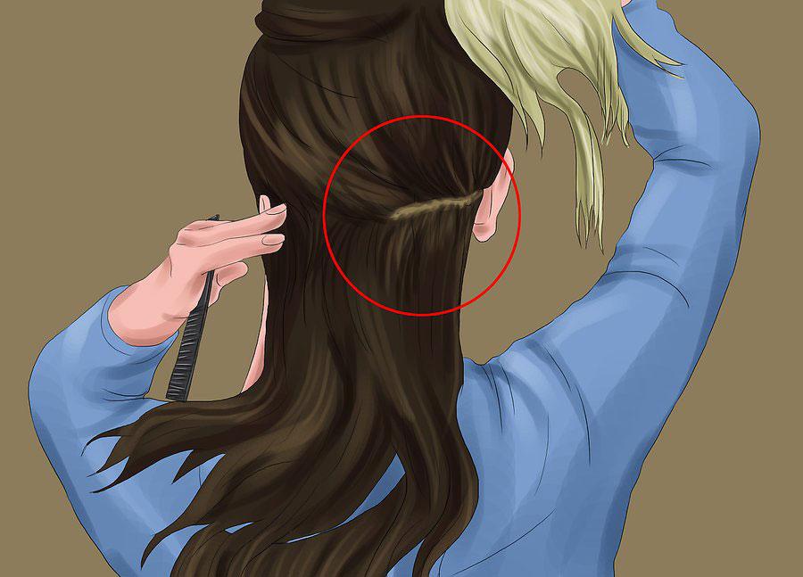 تقسیم بندی موها به بخش های مختلف
